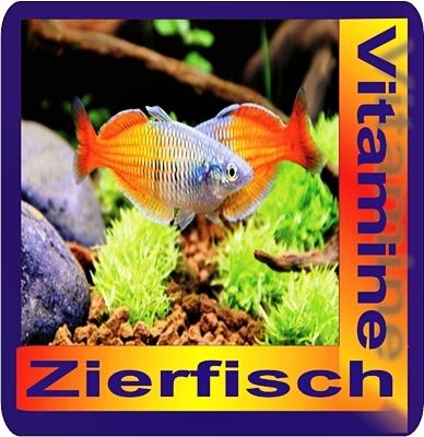 Zierfisch vitas 1liter vitamine guppys platys mollys for Zierfisch versand